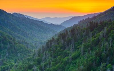 Top 10 Things to do in Cherokee, N.C.